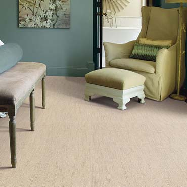 Caress Carpet by Shaw | Lynnwood, WA